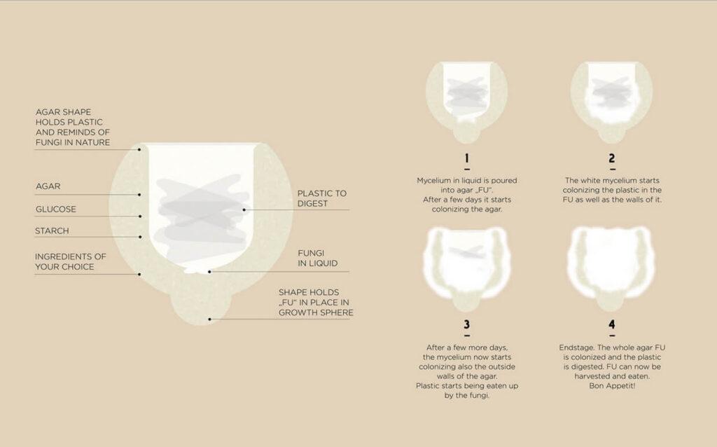 gaba amazon proces
