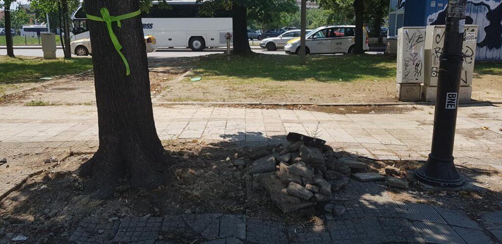 spasuvanje drva 2
