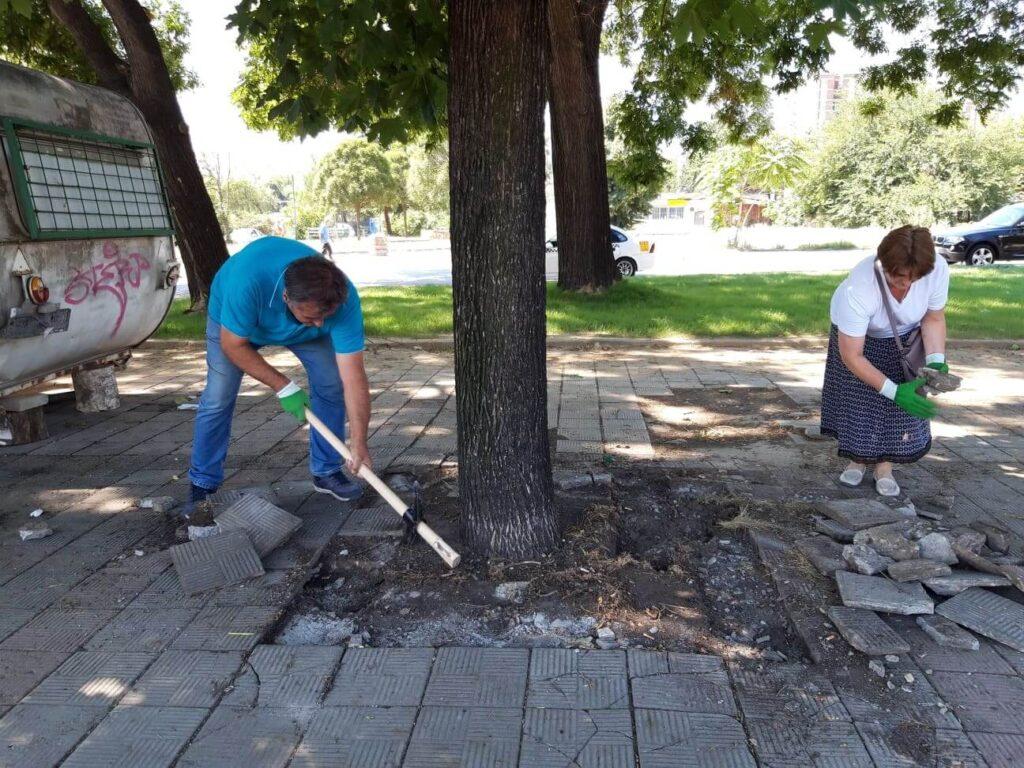 treta akcija za osloboduvanje na drvata 2
