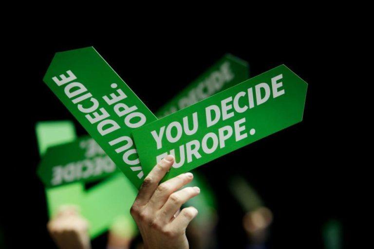 Делегација од ДОМ на Собранието на Европските Зелени, Брисел, 2013