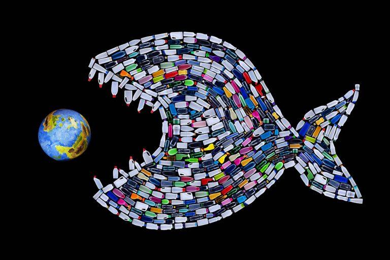 Морачанин: Да се забрани употреба на пластични производи за еднократна употреба во целата држава