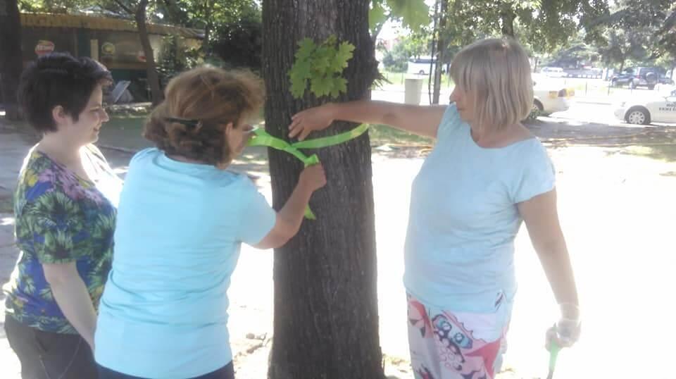 spasuvanje drva 10