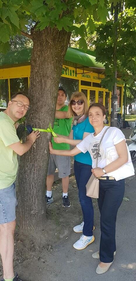 spasuvanje drva 3