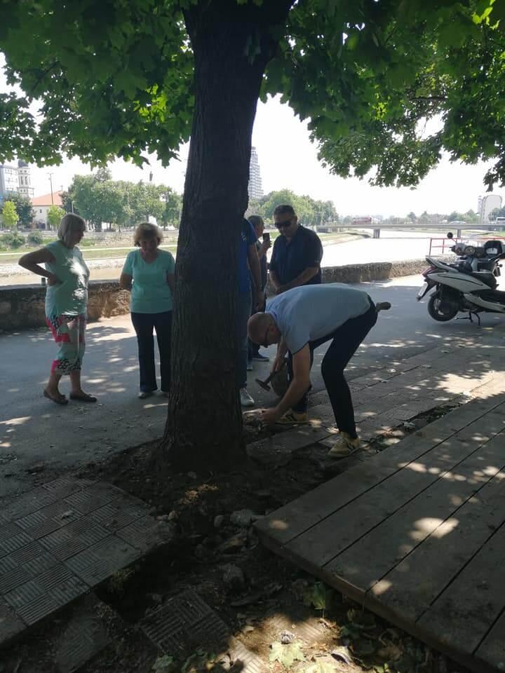 spasuvanje drva 5