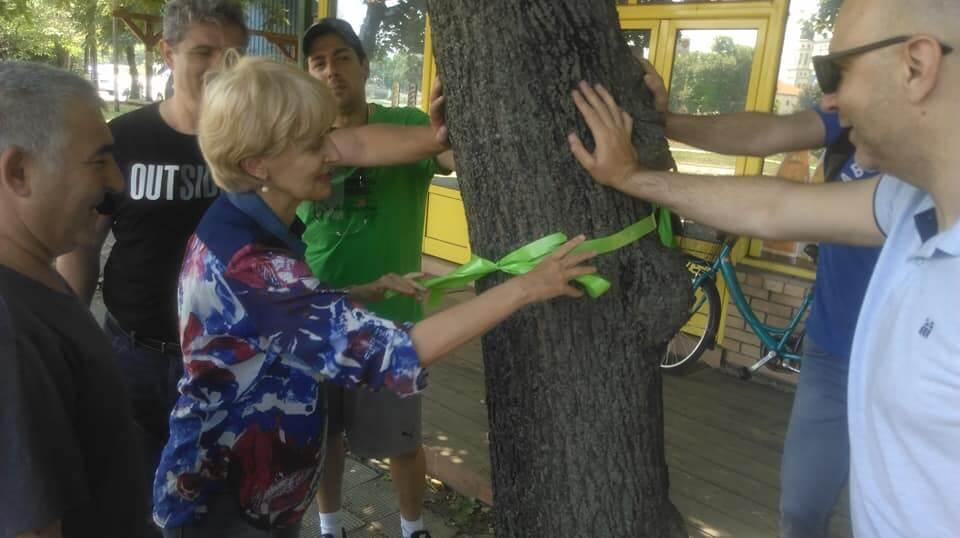 spasuvanje drva 6