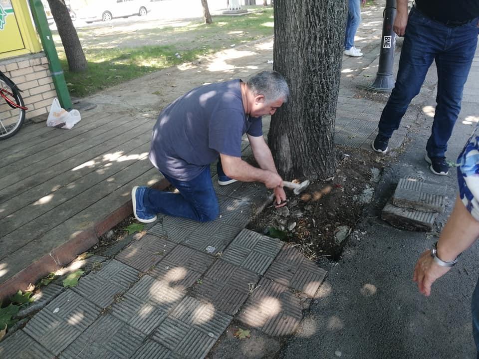 spasuvanje drva 8