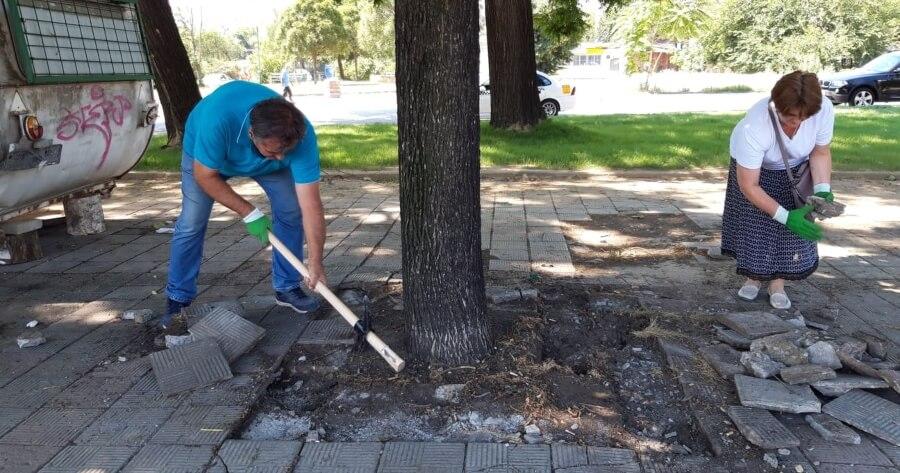 treta akcija za osloboduvanje na drvata 3