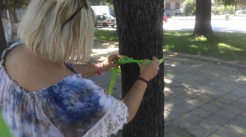 treta akcija za osloboduvanje na drvata 7